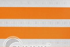 DN-Color_Orange