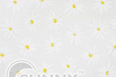 Camomile-White