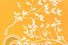 Park-Orange