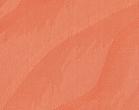 С14 оранжевый