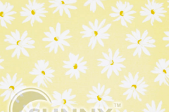 camomile yellow